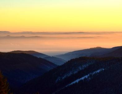 Ore Mountains foggy