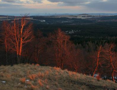 Autumn Ore Mountains