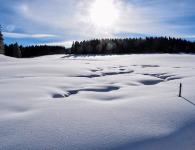 Winter Ore Mountains